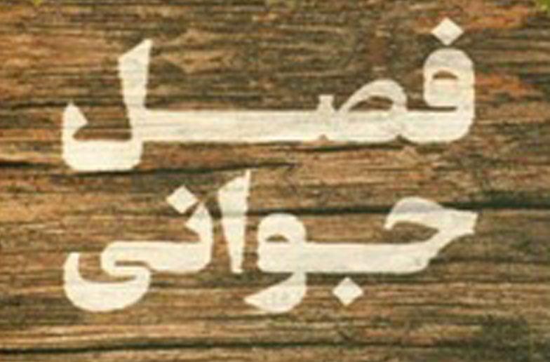 چاپ دوم «فصل جوانی» از علمی و فرهنگی رسید