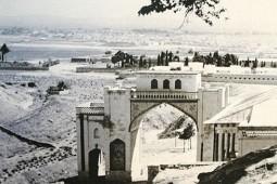 ریچاردز تختجمشید را تماشاییترین و شیراز را زیباترین گوهر ایران میداند