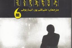کتابی در باب تئاتر سیاسی و چریکی
