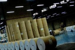 ضرورت تفحص در شیوه تخصیص ارز دولتی برای واردات کاغذ