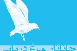 Tehran Radio to air, 'Jonathan Livingston Seagull