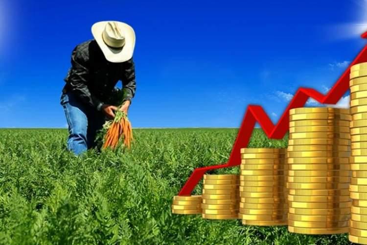 کروپتکین چگونه دو باور اساسی سرمایهداری را زیر سوال میبرد؟
