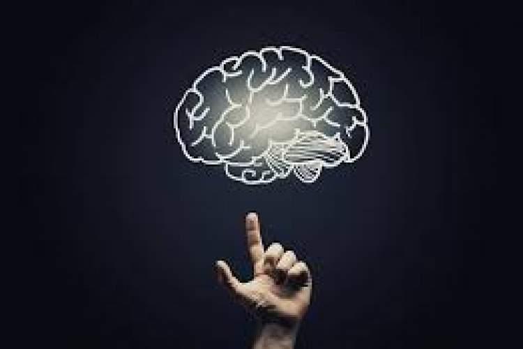 بررسی مواضع فلسفی در باب ماهیت ذهن